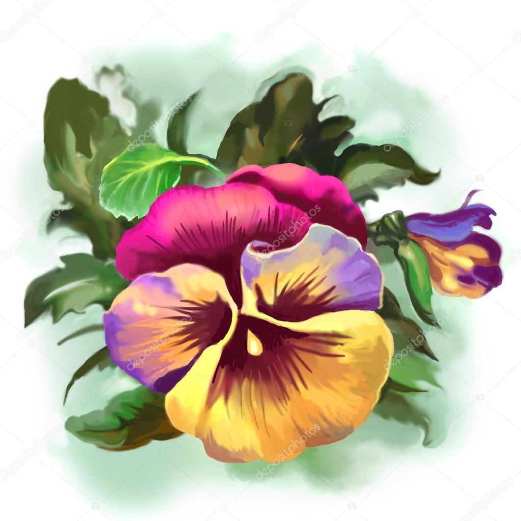 Brillante color flor pensamiento con un brote y hojas verdes ...