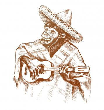 Monkey guitarist in traditional Mexican clothing. Plays guitar in the hat sombrero.