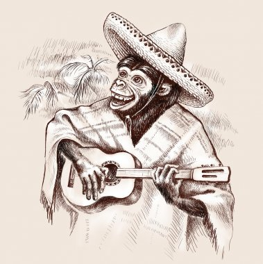 monkey guitarist in traditional Mexican clothing. Plays guitar in the hat sombrero and poncho.