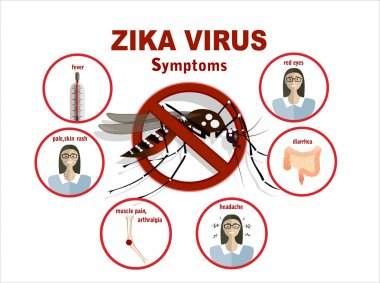 Zika virus symptoms