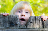 Cute little girl peering over a rustic fence