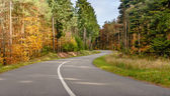 Tortuosa strada asfaltata attraverso gli alberi di autunno