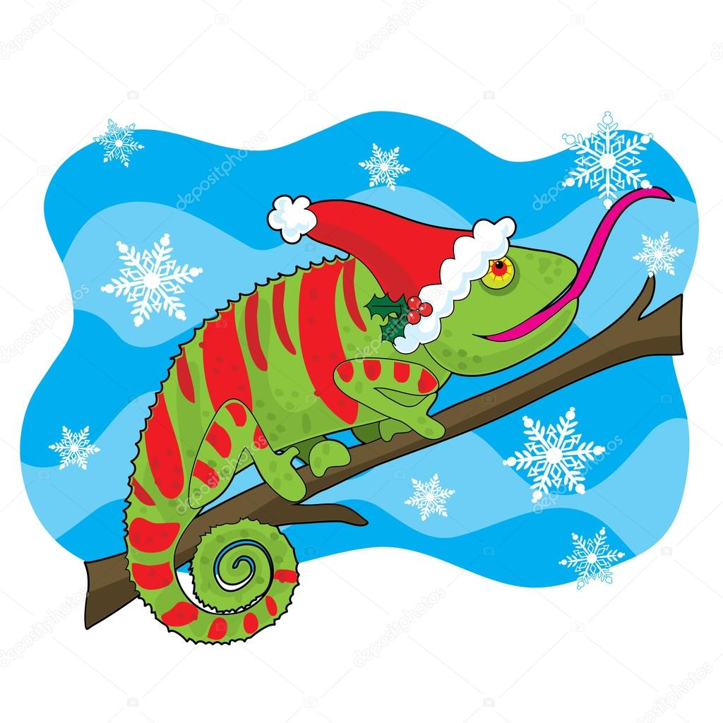A chameleon with a Santa hat