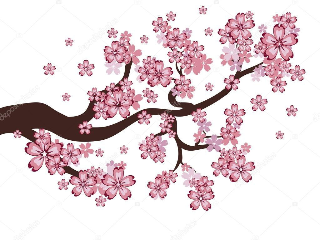 Blooming Sakura Branch