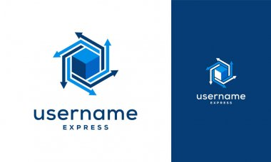 Box Express delivery logo, Logistic company vector logo template icon