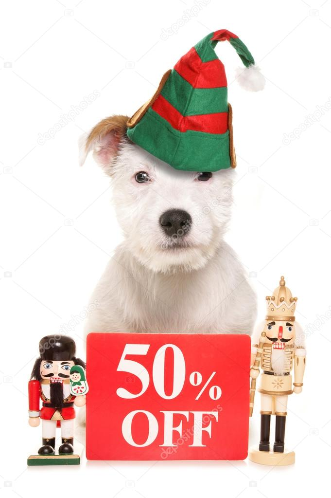 50% off pet shop sign