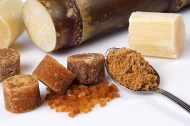 Various kinds of sugar and sugar cane