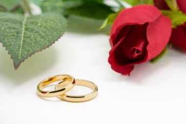 Wedding rings and artificial rose on white background