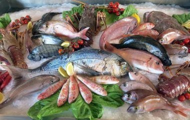 Great white sea bream many saltwater fish in the italian restaur