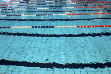 Lane swimming races in the Olympic swimming pool
