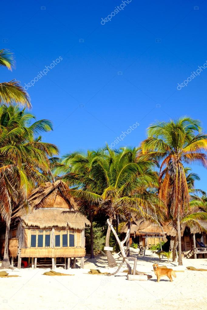 plage d 39 t magnifique paysage avec cabane en bois et. Black Bedroom Furniture Sets. Home Design Ideas