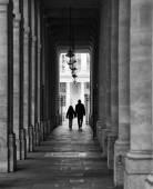 Fotografie Silueta v Paříži