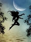 Photo fairy silhouette
