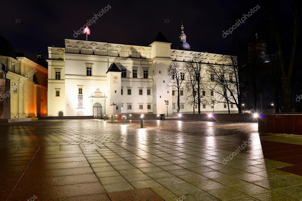 リトアニア大公の宮殿 — ストッ...