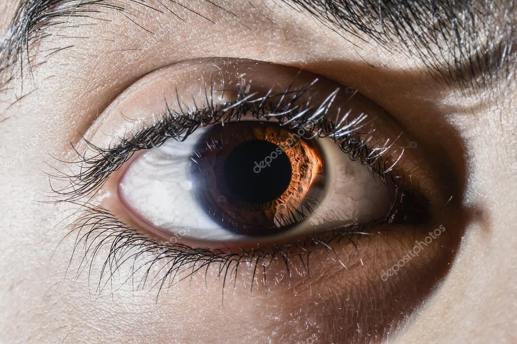 human eye macro shot