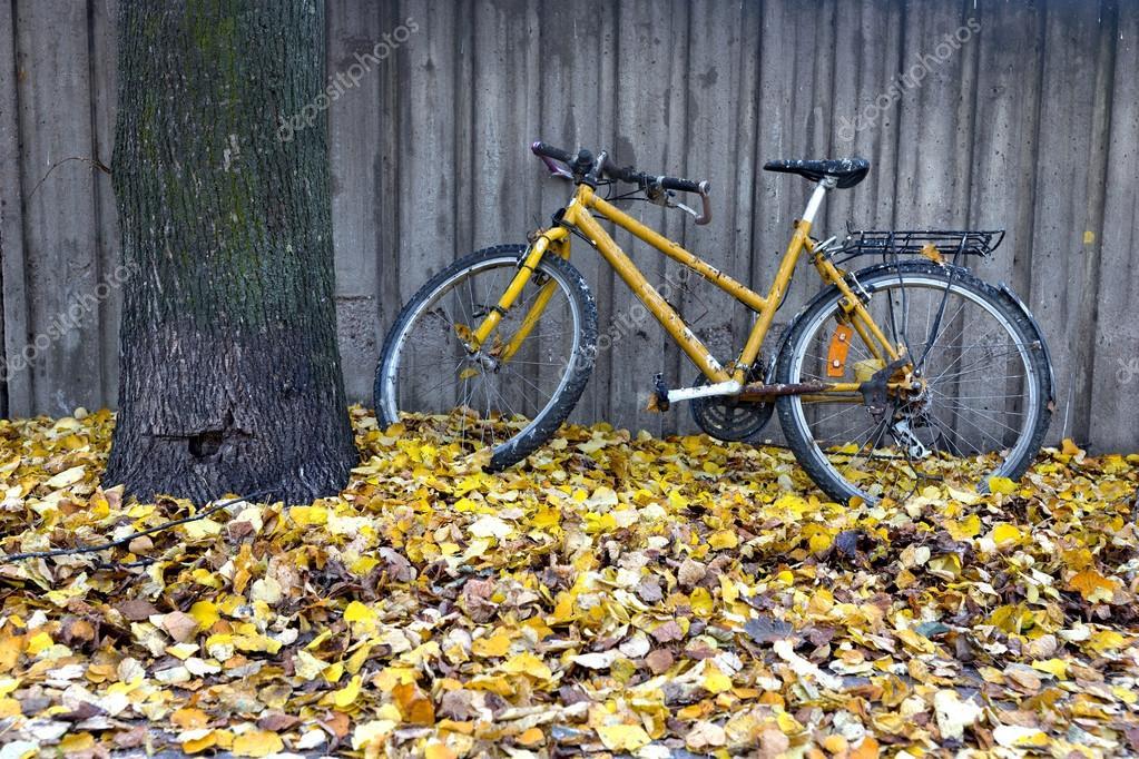 Vintage yellow bike in autumn