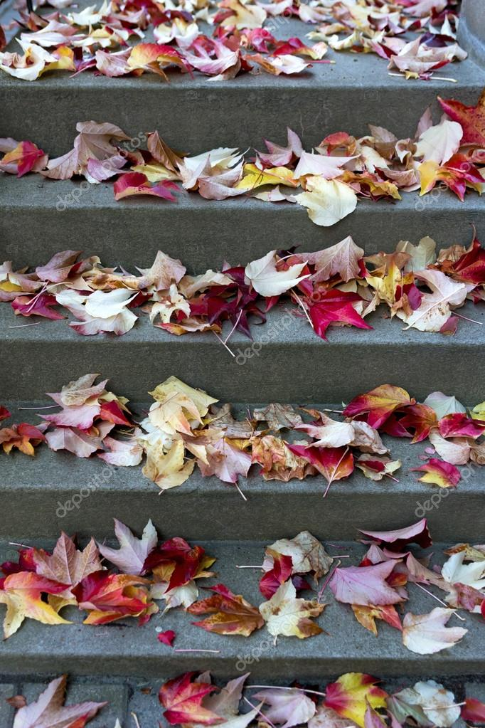 staircase with leaves in autumn