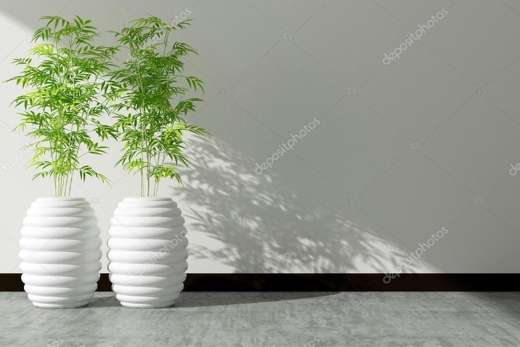 boom pot en witte muur interieur ingericht — Stockfoto © sayhmog ...