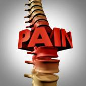 Human Spine Pain