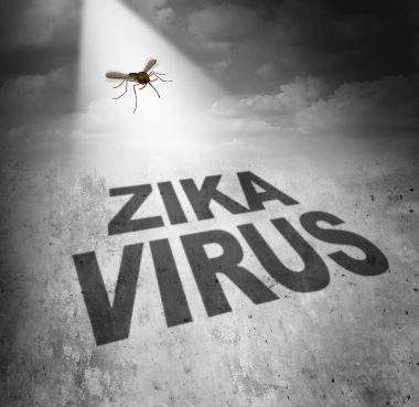 Zika Virus Risk