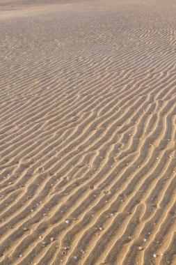 Textural wavy sand on the beach. The desert summer.