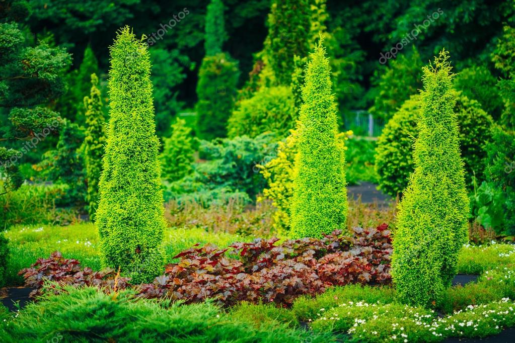 Jardin Diseno De Jardines Cama De Flores Verdes Arboles Y Arbustos