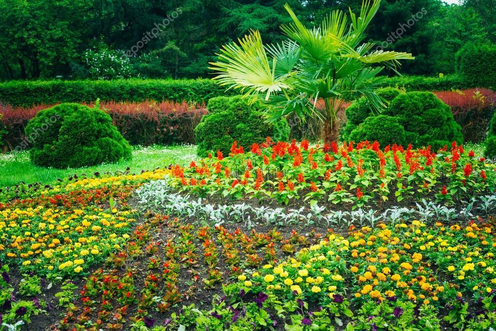 Jardines Con Arboles Y Arbustos Jardin Diseno De Jardines Cama De