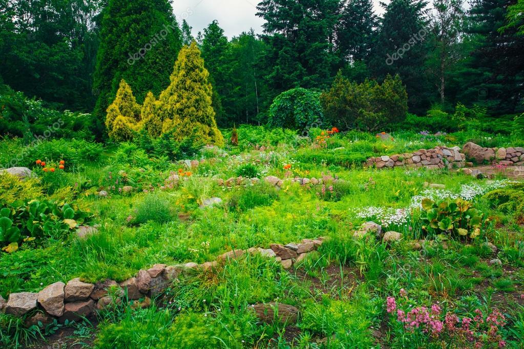 Tuin landscaping design bloem bed groene bomen en struiken in