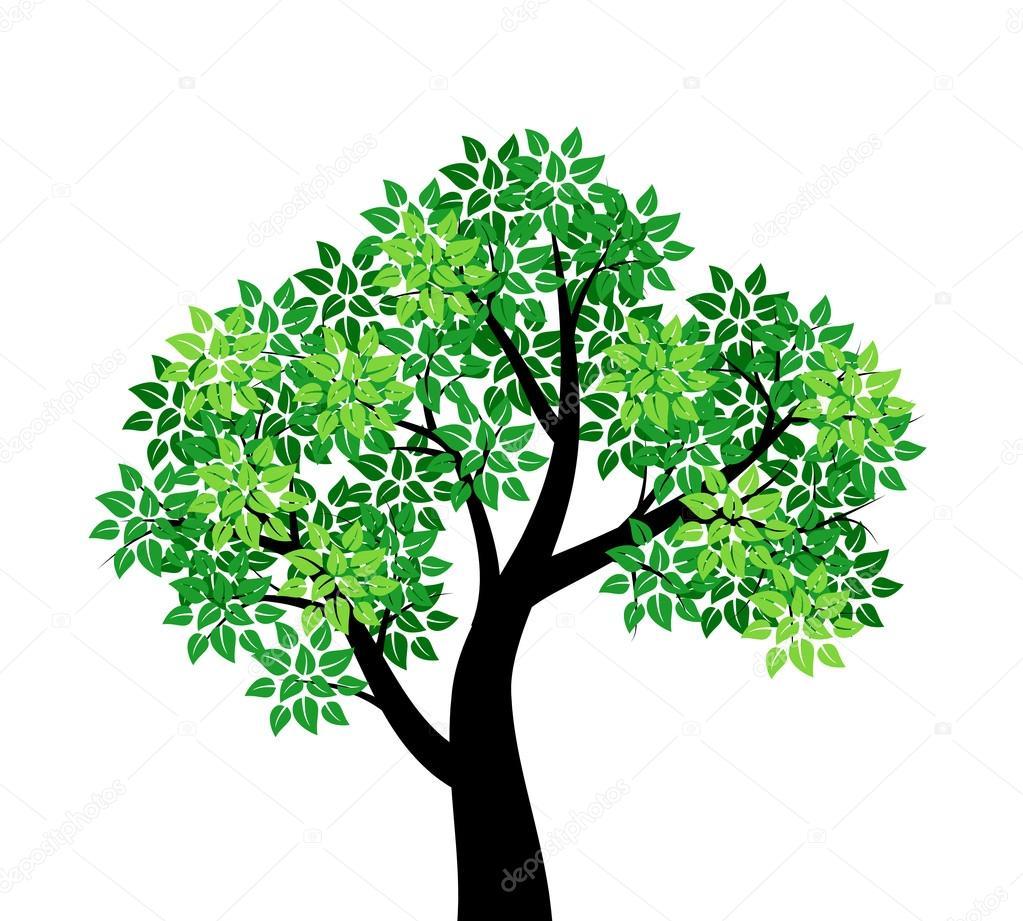 Dibujos Arboles Verdes árbol Con Hojas Verdes Vector De Stock