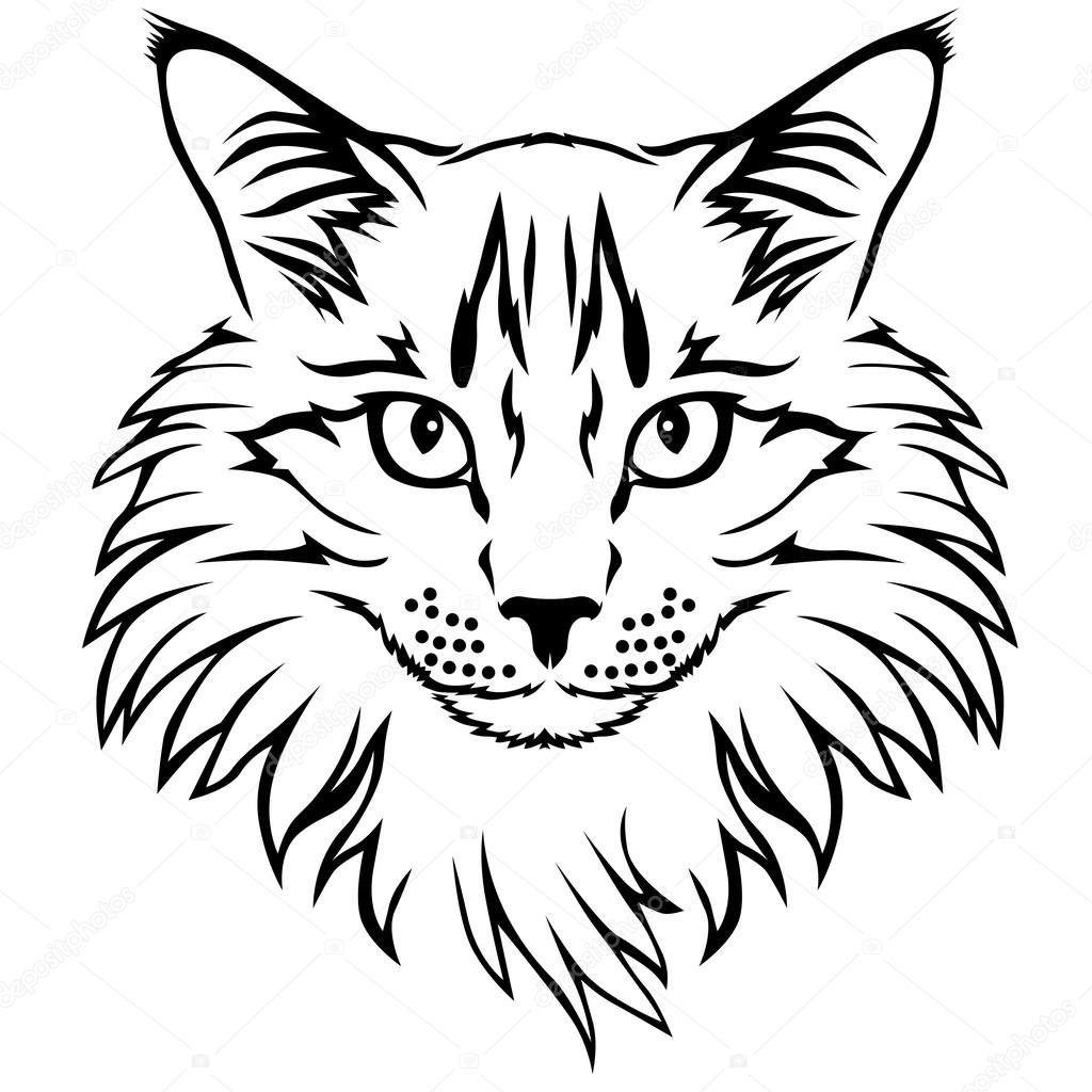 Cat Contour Line Drawing : Contour cat portrait — stock vector agrino