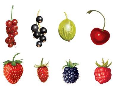 Cartoon ripe berries set
