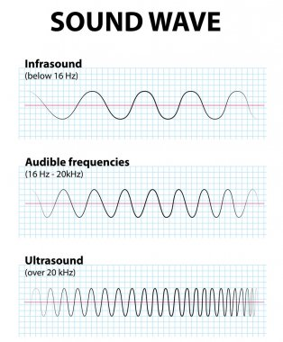Sound wave. Infrasound, ultrasound and audible frequencies. stock vector