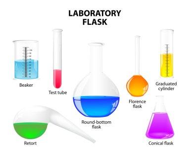 Laboratory flask on white background