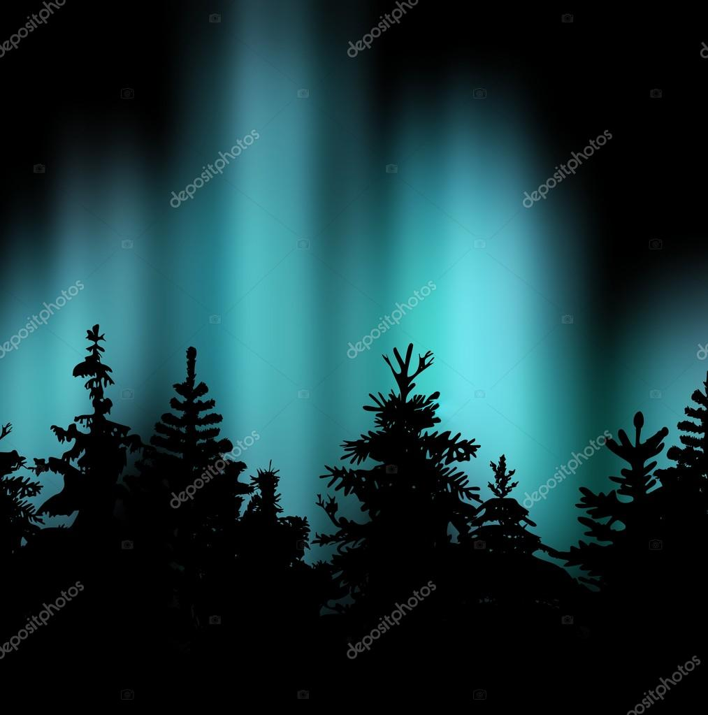 Winter spruce forest against the bright blue green of the Northern lights on a dark night.