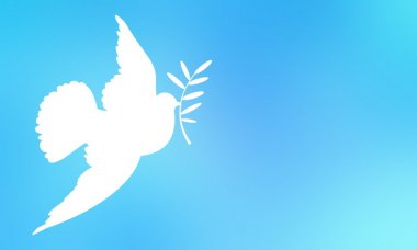 White dove flying in the blue sky, and bears in its beak an olive branch. A symbol of peace, hope and the end of the war.