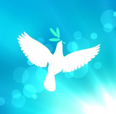 White dove with olive branch flying in blue sky in the rays of the sun and glare. A symbol of peace