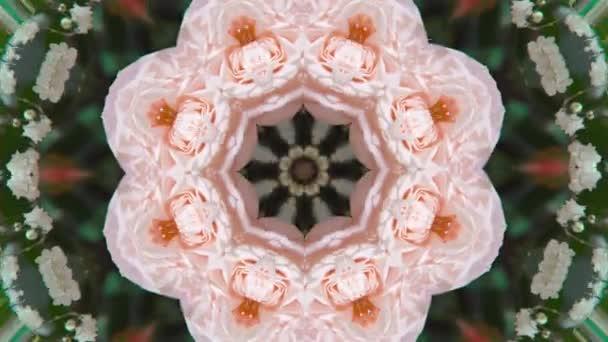 Vzory ve formě květiny, psychedelický pestrobarevný vzor, abstraktní květinové pozadí.
