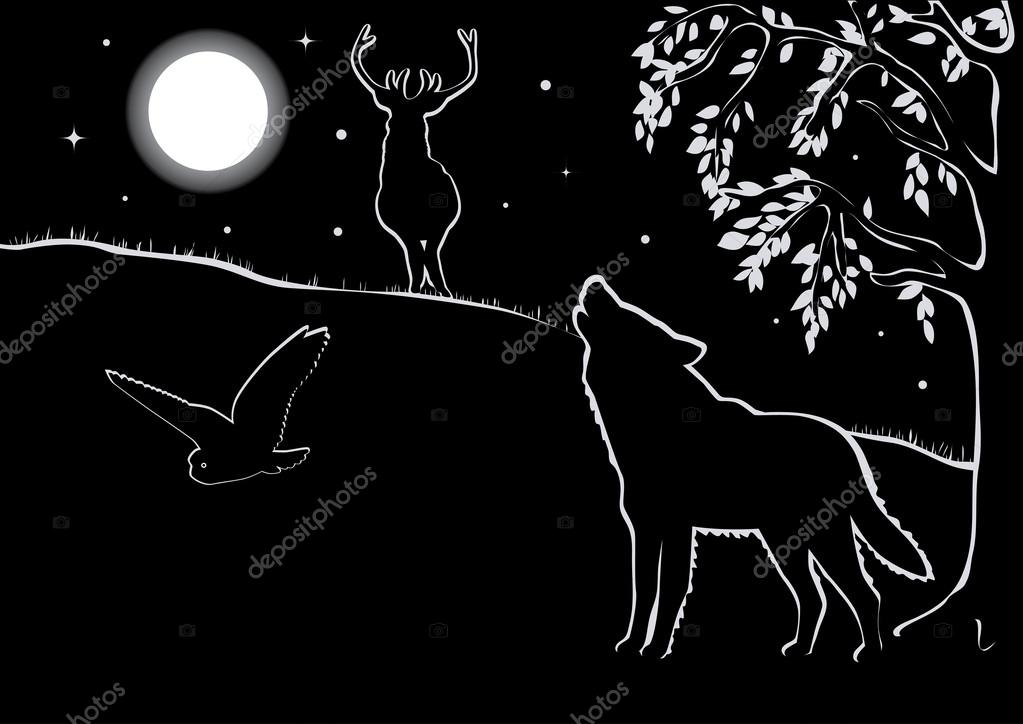Night landscape with animals