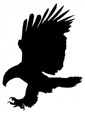 Silhouette of an eagle attacking.