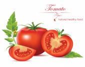 Krásná realistická rajče. vektorové ilustrace