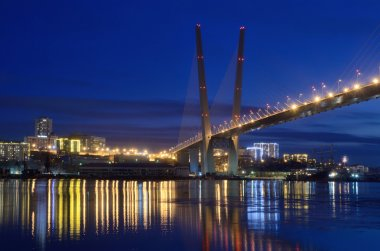 Night view for the bridge  across the Golden horn bay in Vladivostok