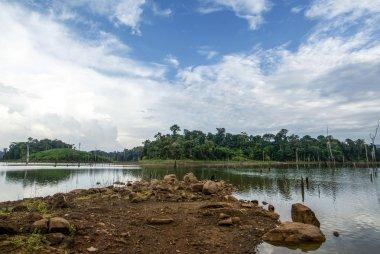 Brokopondostuwmeer reservoir seen from Ston EIland - Suriname  - South America