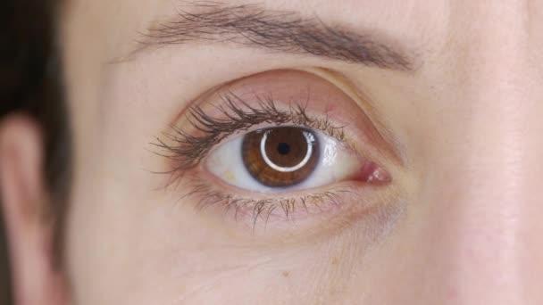 Gyönyörű emberi szem közelkép. Fiatal nő barna egyik szeme. Macro Closeup szemvillanás és keres. Szemhéj, írisz, látás fogalma.