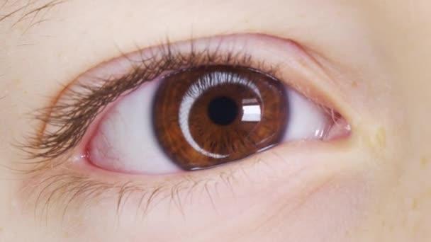 Hnědé oko dítěte při pohledu do kamery zblízka. Makro Shot otevírání a zavírání hnědé oči malý chlapec. Zavřít pohyb dětských očí. Lidské oko duhovka otevření zornice.