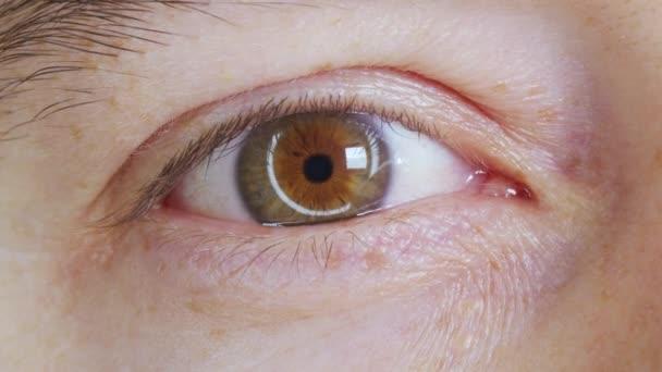 Extrém közelről, ahogy az Ember felnyitja a szemét. Gyönyörű kék zöld írisz és retina. Kaukázusi fiatal férfi modell kék, zöld, szürke szeme kamerába néz.