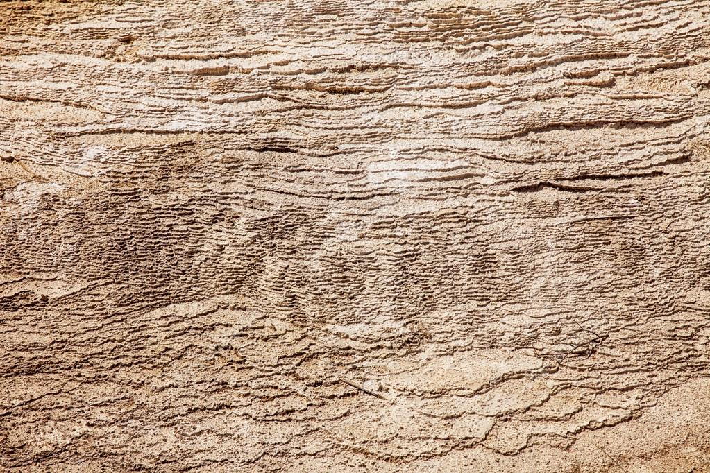 Texture With Layers of Calcium Carbonate