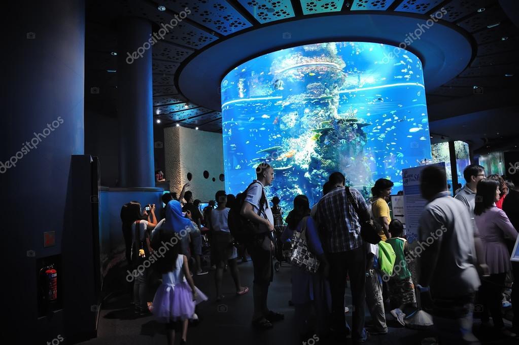 turistas caminando por s.e.a. acuario — Foto editorial de stock ...