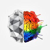 Fotografie Konzept des menschlichen Gehirns