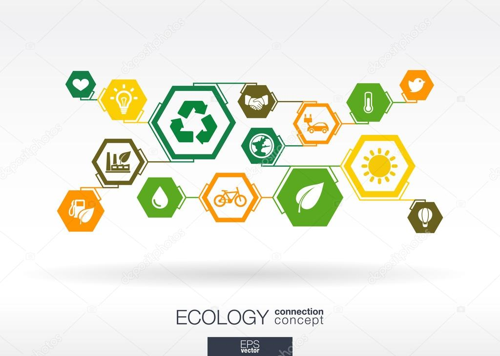 Ecology interactive illustration.