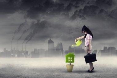 Businesswoman watering plant under air pollution